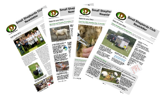 Images of the Small Shepherds Club Newsletter